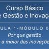 Curso Básico de Gestão e Inovação – Aula 1 – Módulo 1